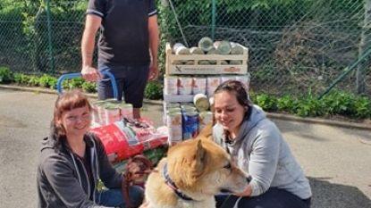 """Supportersclub Onion Boys heeft hart voor dieren: """"290 kg voor honden van dierenasiel"""""""