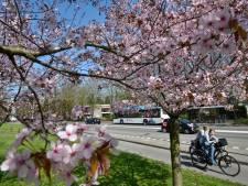Centrum Huissen krijgt nieuwe entree