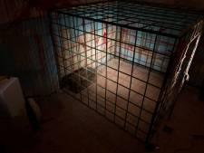 Horrorkelder in huis ontdekt: ouders lieten zoon jarenlang verhongeren, dochter overleden