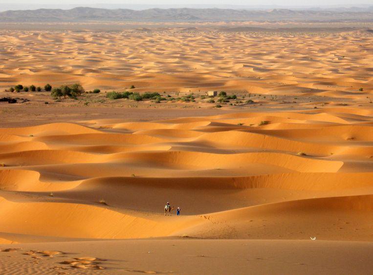 In gebieden met een erg lage luchtvochtigheid, zoals woestijnregio's, klinkt in de taal duidelijk minder variatie in tonen dan in vochtiger omgevingen. Beeld ap