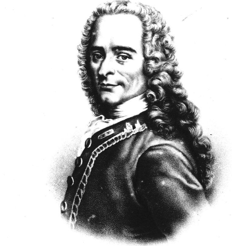 Voltaire Beeld anp