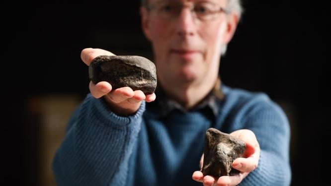 Primeur voor Ierland: fossielen blijken 40 jaar na toevallige vondst afkomstig te zijn van dinosauriërs