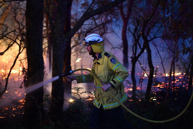 Een brandweerman probeert het vuur te bestrijden, een kleine honderd kilometer ten noorden van Sydney. Beeld AFP