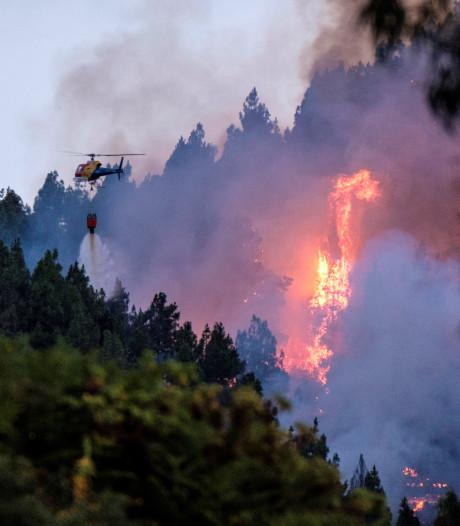 2000 evacuaties om bosbranden vakantie-eiland Gran Canaria