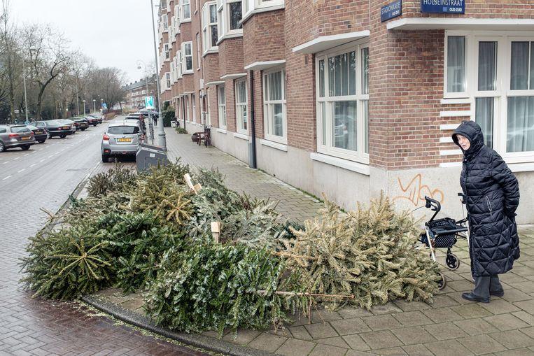 Kerstbomen op de Stadionkade. Beeld Jakob Van Vliet
