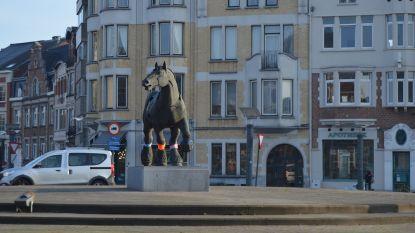 Ook boerenpaard Rik Poot doet mee aan Wereld Downsyndroomdag