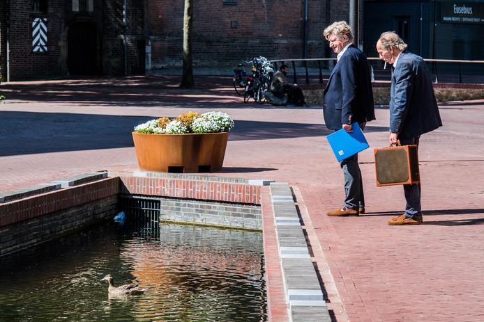 Eenden met kroost in de Jansbeek in de Arnhemse binnenstad.