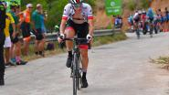 Supertalent Pogacar wint loodzware en ultrakorte bergrit in Vuelta, Quintana nieuwe leider