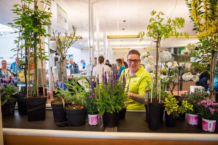 Tuinplanten worden ook bij de Intratuin in Duiven massaal ingeslagen.