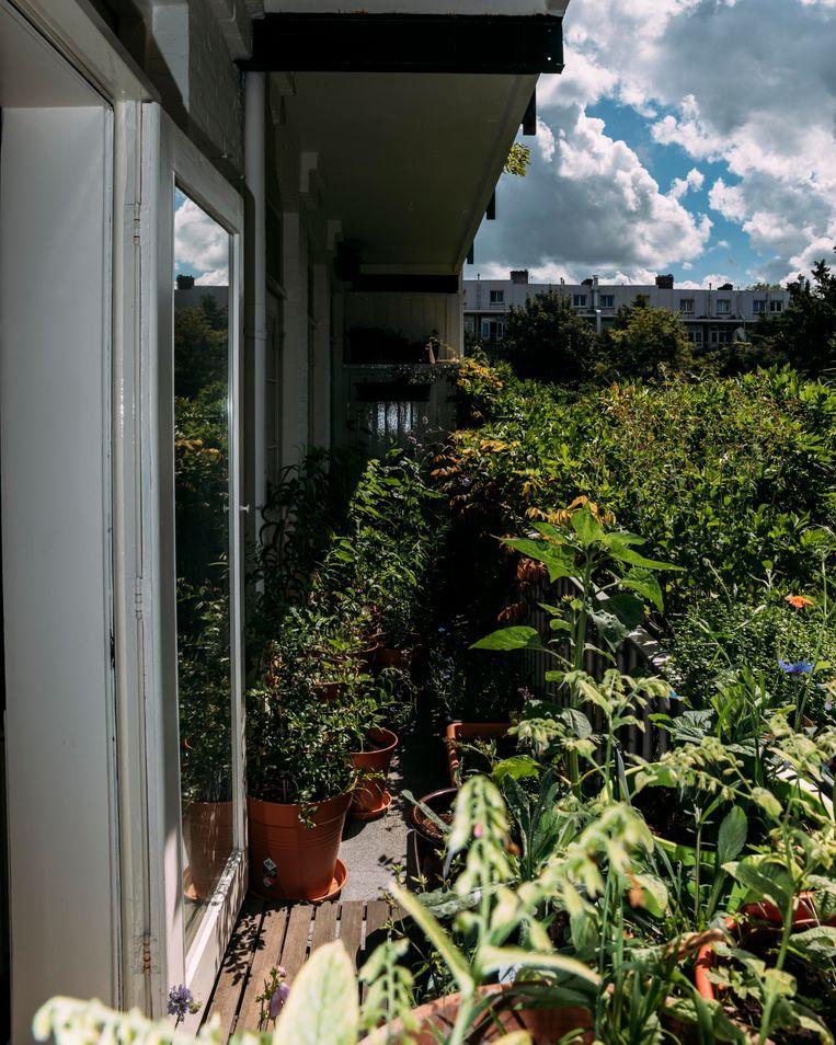 Het balkon. Beeld Rebecca Fertinel