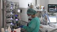 Van afvlakking nog geen spoor bij AZ Sint-Maarten: aantal patiënten blijft toenemen