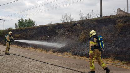 Bermbrand langs spoorweg: verschillende brandjes tussen Aalst en Gent-Sint-Pieters