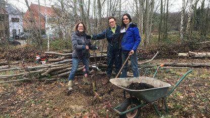 """BosAardBlij op zoek naar hulp voor nieuw voedselbos: """"We willen een mooiere wereld nalaten"""""""