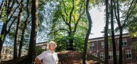 Heilige Mariaboom teruggevonden: de verborgen verhalen achter Mariënboom en het Mariënbosch