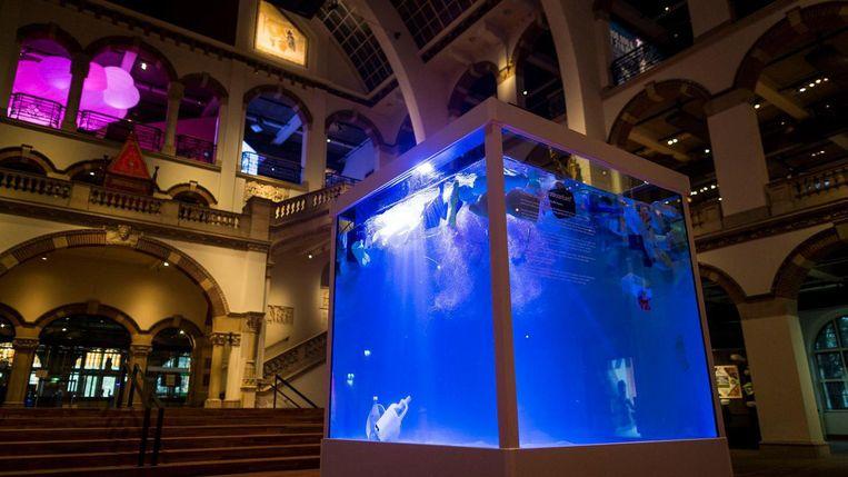 In een kubus met ribben van 1,4 meter ziet de bezoeker de Grote Oceaan met afval, maar zonder vissen Beeld Rink Hof