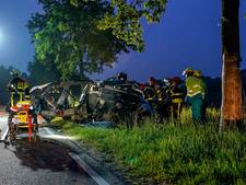 Auto volledig in de prak na harde botsing tegen boom in Almkerk, bestuurder raakt zwaargewond