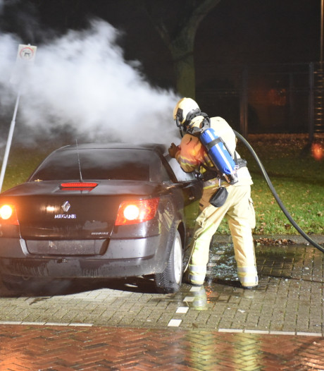 Drie auto's in brand in Hoograven