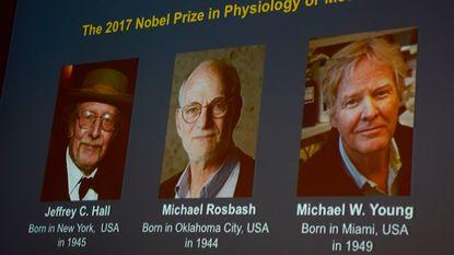 Nobelprijs Geneeskunde voor Amerikanen die biologische klok onderzoeken
