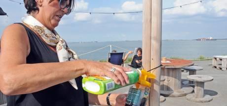Lokpotten helpen goed tegen wespenplaag bij Bar Goed