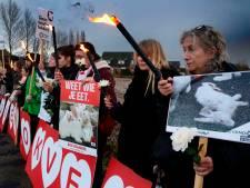 Konijn in Nood: We komen terug naar Leerbroek