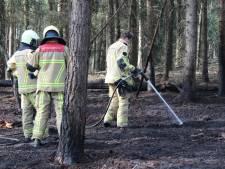 Natuurbrand in buitengebied Holten laait weer op