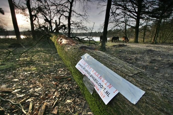 Tegen de bomenkap op Herperduin in Oss werd eind 2007 een grote handtekeningenactie gehouden. Foto Ruud Rogier