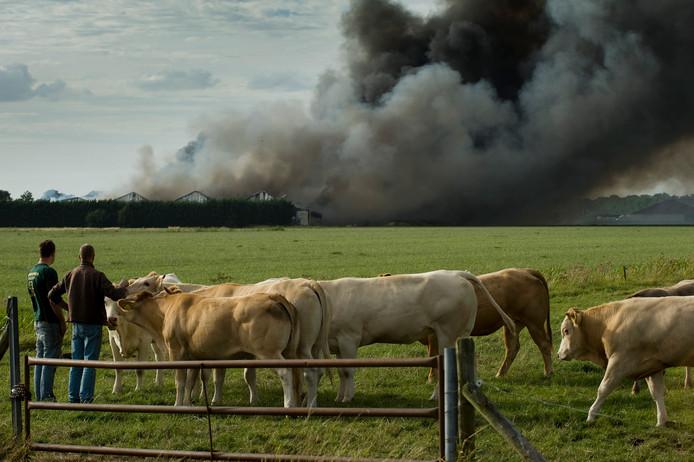 De brand bij varkenshouderij Knorhof in 2017.