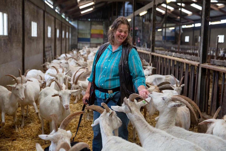 Liesbeth Brands-Hospers tussen de geiten.