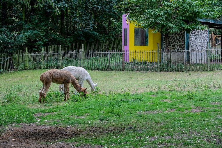 kinderboerderij aan Maximiliaanpark