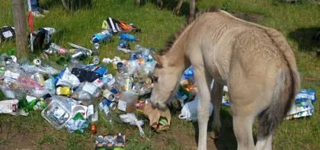 Stalen kliko's moeten afvalprobleem Ooijse natuur tegengaan