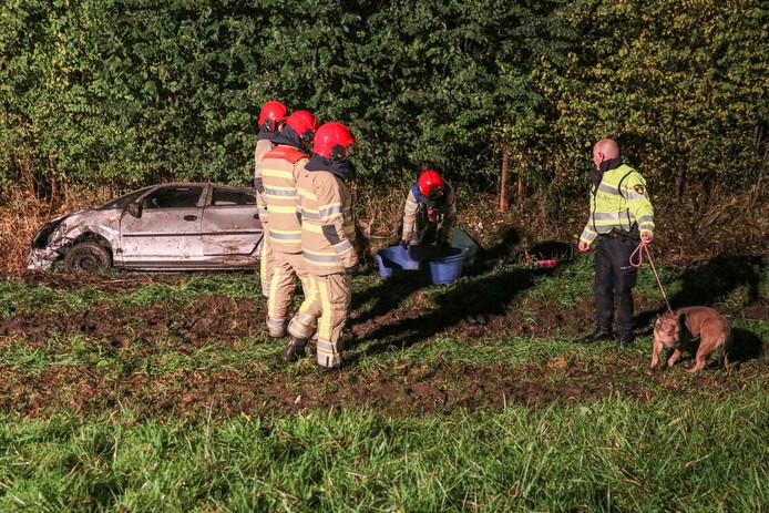 Een agent ontfermde zich na de crash over de hond die met de schrik vrij kwam. Een andere viervoeter rende in paniek de A6 op en kwam daar in botsing met een voertuig.