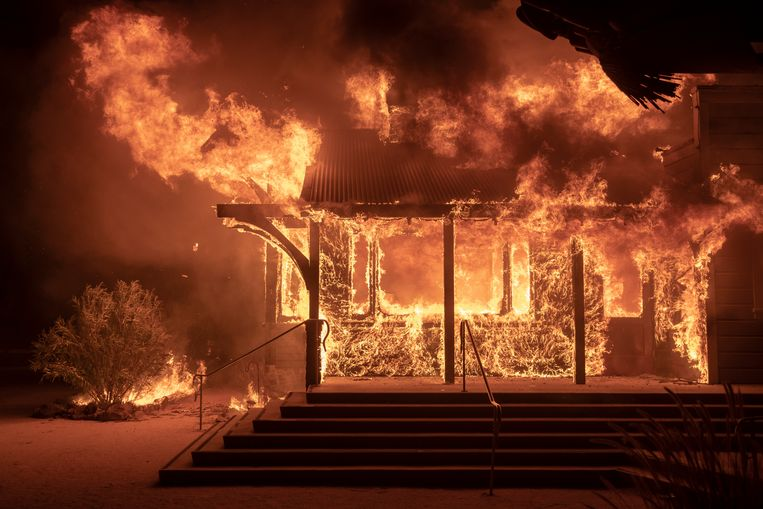 Natuurbranden in Californië bedreigen nu ook rijke en beroemde inwoners van Los Angeles. Duizenden woningen in luxueuze wijken als Pacific Palisades en Brentwood dreigen ten prooi te vallen aan het vuur. Ook toeristische trekpleisters als Mulholland Drive en Sunset Boulevard liggen in het gebied waar mensen gedwongen worden geëvacueerd. Beeld EPA