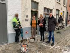 Al honderd nieuwe plantvakken voor gevelgroen in Brugge