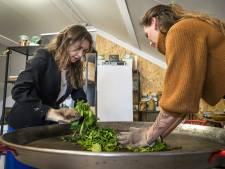 Provincie wil Brabantse visie op landbouw; meedenken kan tijdens Dutch Design Week