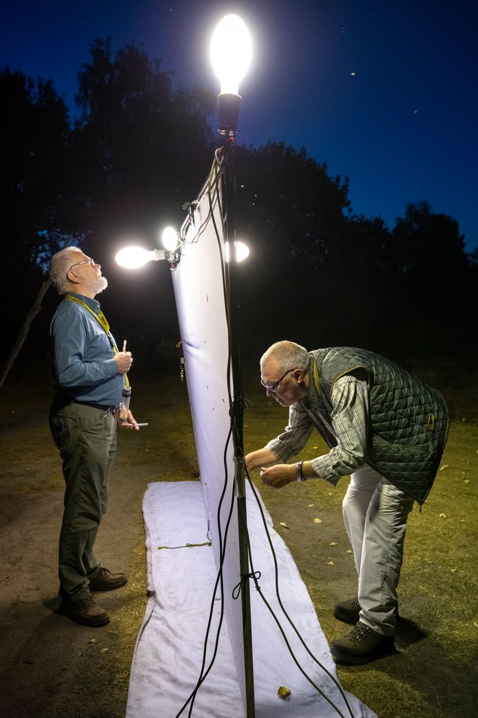 Twee tellende mannen (Guido Stooker en Paul van Wielink), vier kwikdamplampen en een scherm van twee bij drie meter.