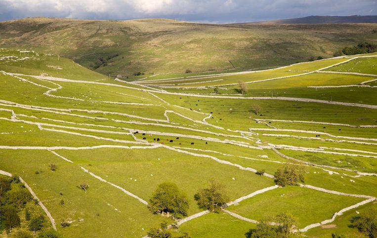 Graafschap: Yorkshire Dales. 'Dit land is het grootste nationale park ter wereld.' Beeld Getty