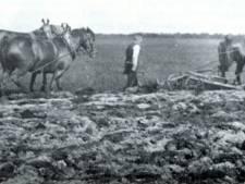 Elsendorp en Rips gunstig voor starters dankzij voordeliger grond