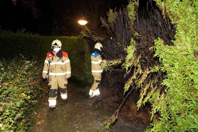 Coniferenhaag in brand in Oudheusden