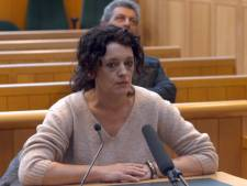 Moeder meldt kinderen ziek voor dagje extra vakantie: honderden euro's boete