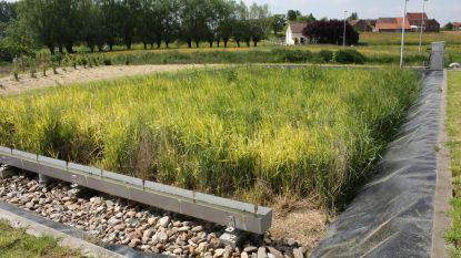 Bezoek de nieuwe zuiveringsinstallatie in Izenberge