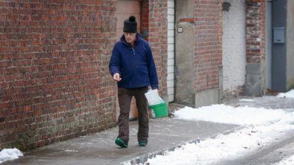 "Vlaams Belang Ieper: ""Geef elk Iepers gezin tien kilo strooizout."""