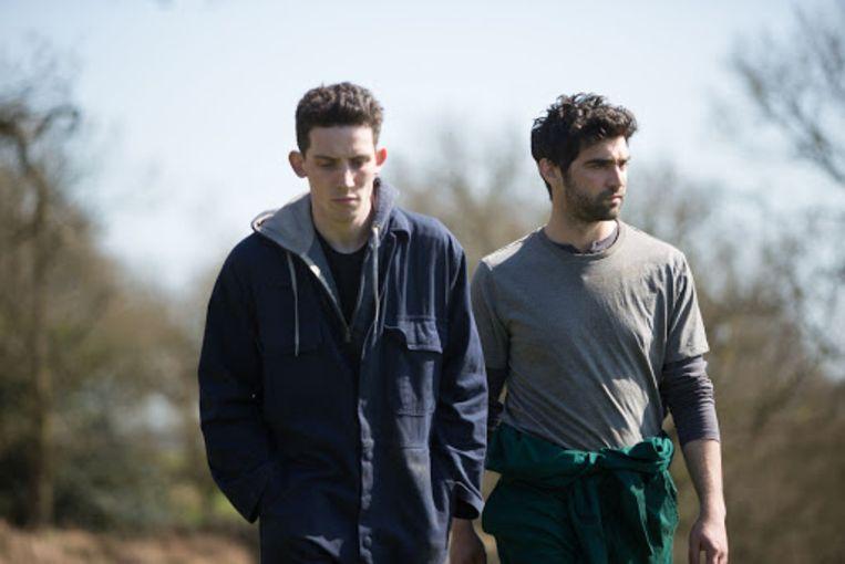 Josh O'Connor (links) en Alec Secăreanu in God's Own Country. Beeld