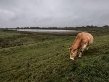 Ode aan het verdronken dorp Leuven, daar waar het water woest was