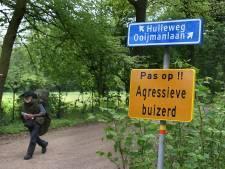 'Terrorbuizerd' weer gesignaleerd bij 't Onland in Doetinchem