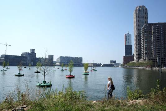 De Rijnhaven, met op de achtergrond de Codrico-fabriek met de kubus op het dak
