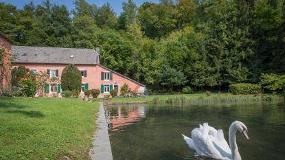 Tijd voor een detoxweekend? Ga ontstressen in deze idyllische boshuisjes in de Ardennen