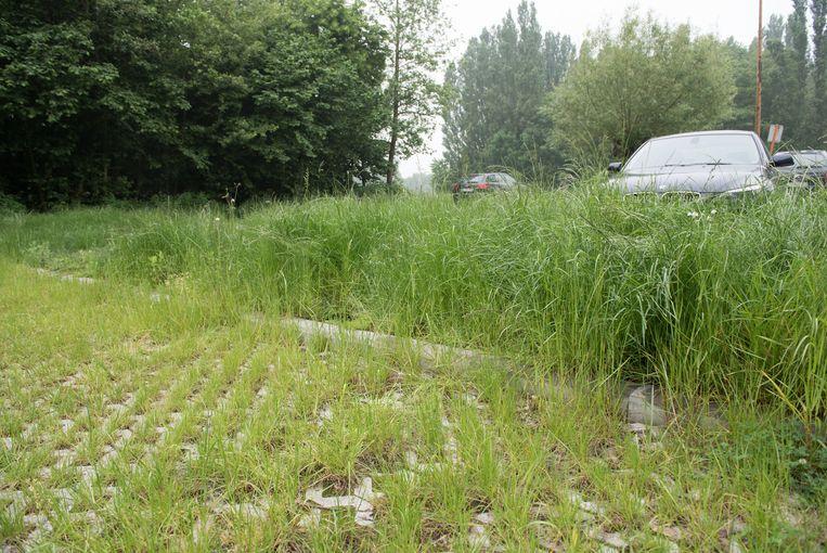 Op de overwoekerde parking staat het gras kniehoog.