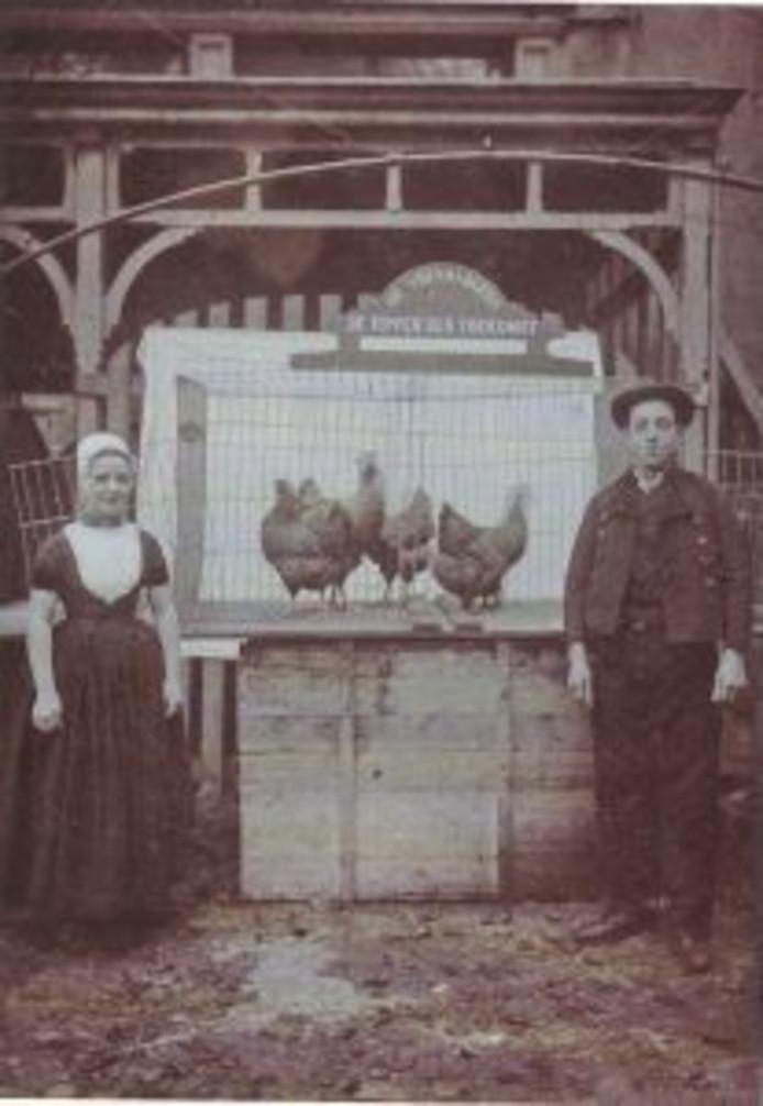 Een Walchers echtpaar poseert bij een ren met Vreeburger kippen, 1906.