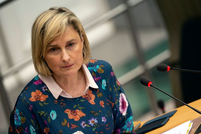 Vlaams minister van Onderwijs Hilde Crevits