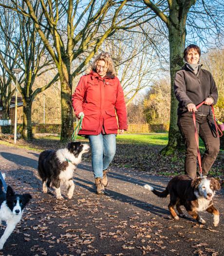 Bezoekers Zegersloot-Noord huiverig voor herinrichting 23 hectare natuur: 'Handen af van ons oerbos'